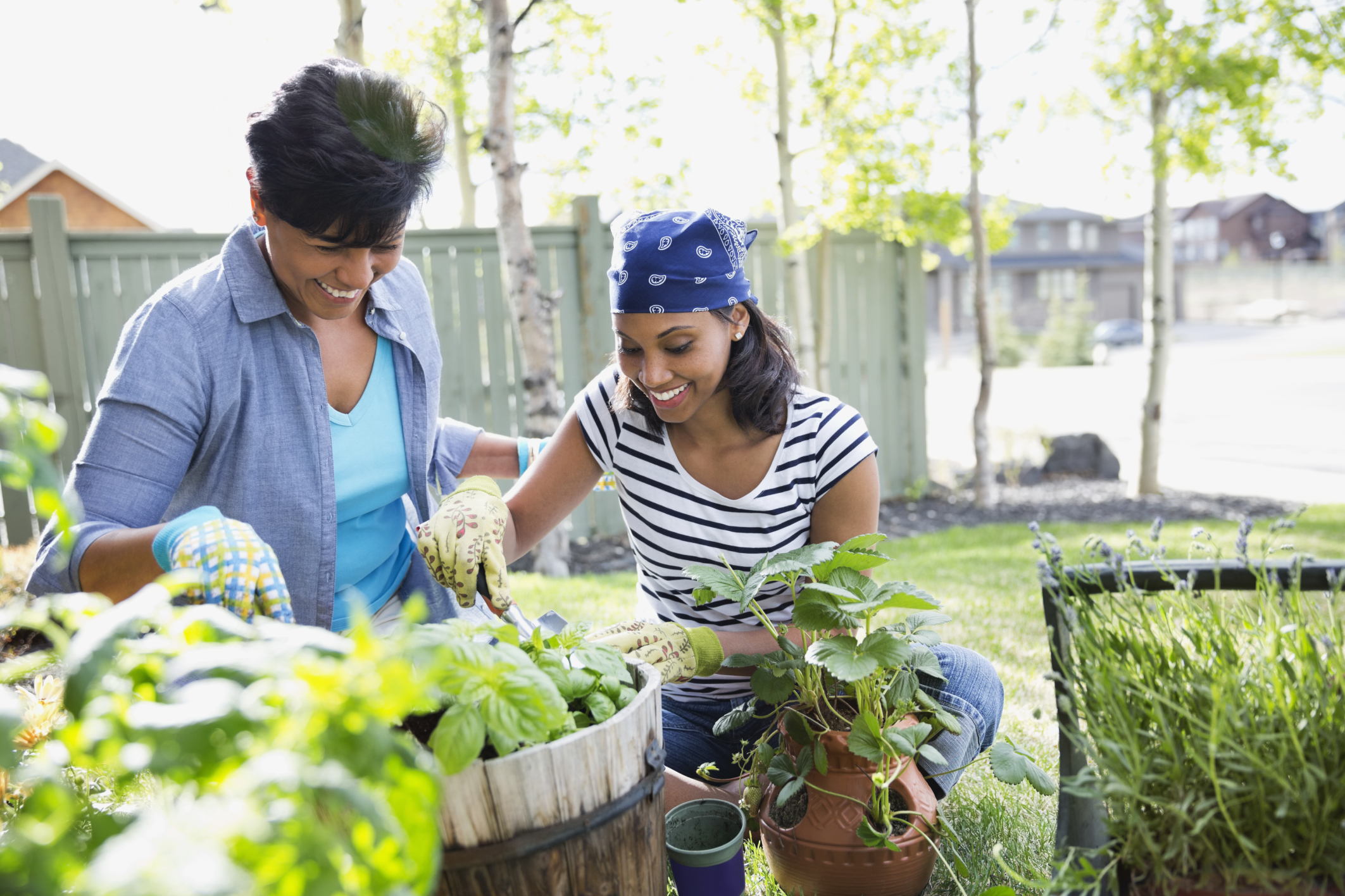 Mother and adult daughter gardening together