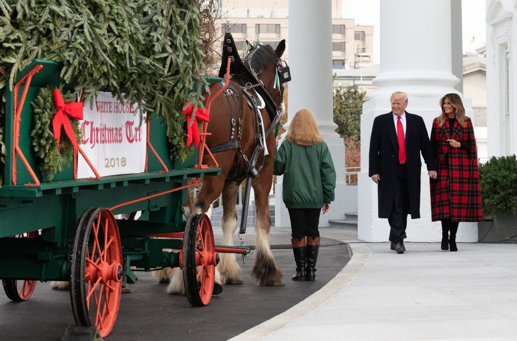 The Official White House Christmas Tree presentation with US President Donald J. Trump and First Lady
